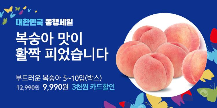 0702 과일